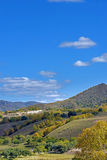 Bosque de la montaña en el otoño Foto de archivo libre de regalías