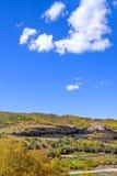 Bosque de la montaña en el otoño Imagen de archivo