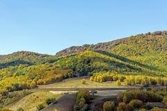 Bosque de la montaña en el otoño Imagen de archivo libre de regalías