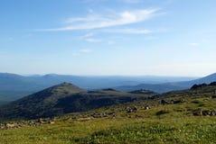 Bosque de la montaña en los Urales Imágenes de archivo libres de regalías