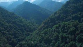 Bosque de la montaña en niebla y nubes Vista aérea de las colinas verdes excesivas con la niebla blanca, nubes Región de Guria, G almacen de metraje de vídeo