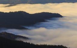 Bosque de la montaña sobre las nubes imágenes de archivo libres de regalías
