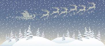 Bosque de la Navidad Fotografía de archivo libre de regalías