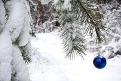 Bosque de la Navidad Imagen de archivo libre de regalías