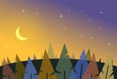Bosque de la noche con la luna y las estrellas Foto de archivo