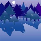 Bosque de la noche del invierno. Imágenes de archivo libres de regalías