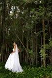 Bosque de la novia fotos de archivo libres de regalías