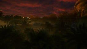 Bosque de la palmera con las nubes tempestuosas recolectadas en el top, 4K libre illustration