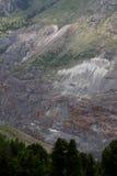 Bosque de la picea de Noruega y geología alpina Imagen de archivo libre de regalías