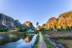 Bosque de la piedra caliza en Sulawesi del sur Indonesia Fotografía de archivo libre de regalías