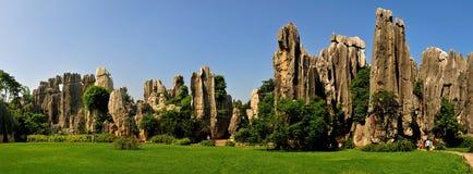 Bosque de la piedra de China Foto de archivo libre de regalías