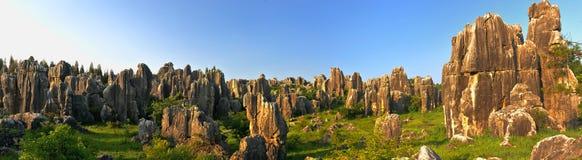 Bosque de la piedra de China Imagenes de archivo