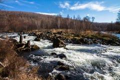 Bosque de la travesía de río Imágenes de archivo libres de regalías