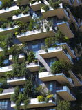 Bosque de la vertical del rascacielos Imagen de archivo