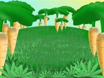 Bosque de la zanahoria Foto de archivo libre de regalías