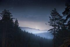 Bosque de los árboles de pino de la noche y montaña y trueno Imagen de archivo libre de regalías