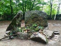 Bosque de MERLIN foto de archivo