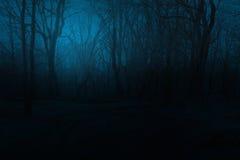 Bosque de niebla fantasmagórico de la montaña en la noche Fotos de archivo