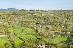 Bosque de Orvieto Imagen de archivo