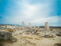Bosque de piedra Fotos de archivo libres de regalías