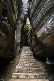 Bosque de piedra Imagen de archivo