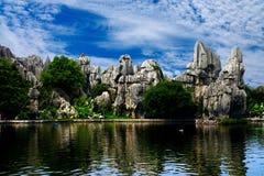 Bosque de piedra Imagen de archivo libre de regalías