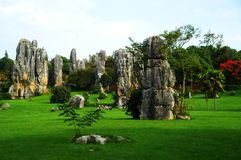 Bosque de piedra, China Imagen de archivo libre de regalías