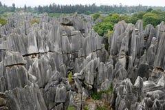 Bosque de piedra, Yunnan, China Foto de archivo libre de regalías