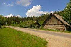Bosque de Rudna Imagenes de archivo
