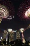 Bosque de Supertree com Marina Bay Sands na noite - P imagem de stock