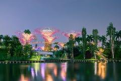 Bosque de Supertree em jardins pela baía Imagem de Stock
