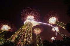 Bosque de Supertree Jardine pela baía na área de Marina Bay na noite, fotografia de stock