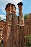 Bosque de Yuanmou Imagen de archivo