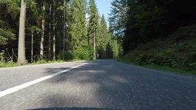 Bosque del abeto del canal del coche que apresura almacen de video