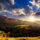 Bosque del abeto en una colina en la puesta del sol en la puesta del sol fotos de archivo libres de regalías