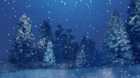 Bosque del abeto Nevado en la noche 4K del invierno de las nevadas almacen de video