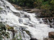 Bosque del agua del parque de naturaleza de la cascada fotografía de archivo