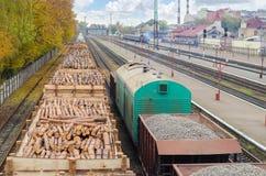 Bosque del ambiente, de la naturaleza y de la tala de árboles - tala de árboles El concepto de un problema global Tren de carga c Fotos de archivo libres de regalías