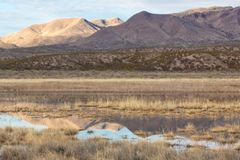 Bosque del Apache view of New Mexico mountains and reflections in winter landscape. Horizontal aspect stock photo