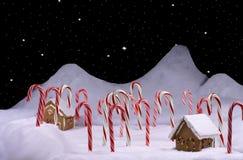 Bosque del bastón de caramelo de la Navidad con el cielo estrellado foto de archivo