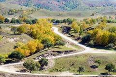 bosque del camino y de la montaña en el otoño Imagen de archivo