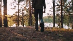 Bosque del canal del hombre que camina sutil cerca del lago en puesta del sol almacen de video