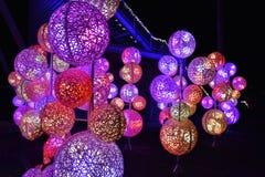 Bosque del cuento de hadas con la iluminación colorida imágenes de archivo libres de regalías