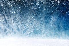 Bosque del cuento de hadas en helada de ventana imagen de archivo