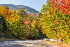 Bosque del Estado blanco colorido en otoño, New Hampshire de la montaña fotos de archivo libres de regalías