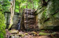 Bosque del Estado de Allegheny imagenes de archivo