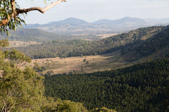 Bosque del estado de Brooyar Imagenes de archivo