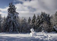 Bosque del invierno con el muñeco de nieve que se sienta foto de archivo