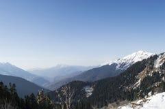 Bosque del invierno con las montañas nevosas debajo del cielo Fotografía de archivo