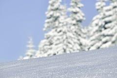 Bosque del invierno de la montaña imagenes de archivo